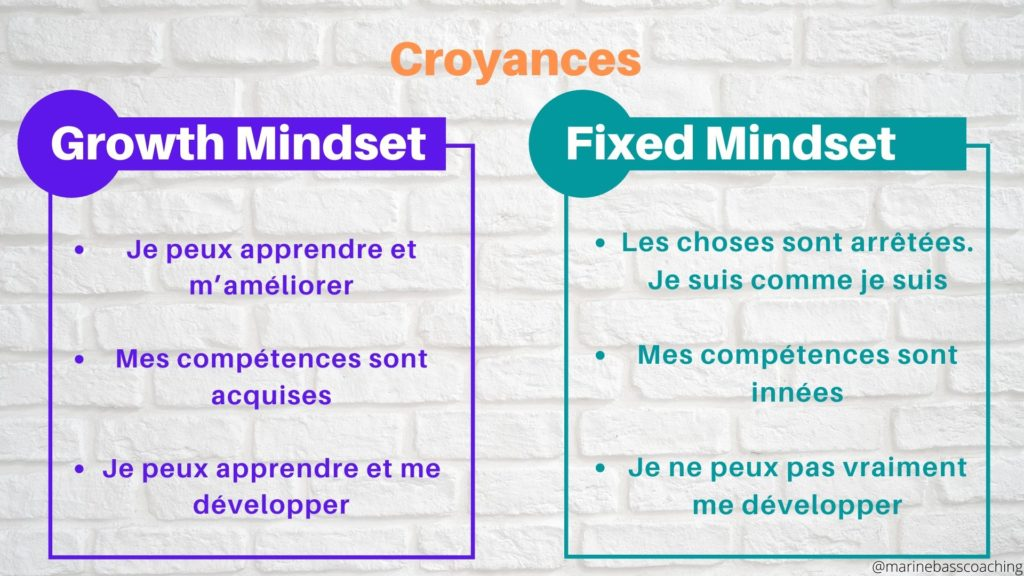 Croyances à la base du Growth et Fixed Mindset