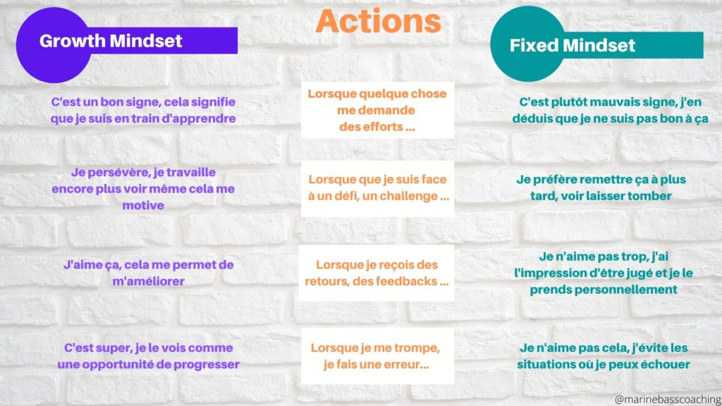 Growth et Fixed Mindset : 2 comportements littéralement différents